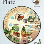 Introducing the Plant Plate: A Food Guide for Vegans