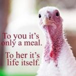 Good Stories and Good Food for Vegan Thanksgiving Activism