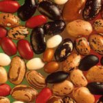 Your Vegan New Year's Diet: Don't Forget the Protein